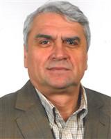 Victor Calin